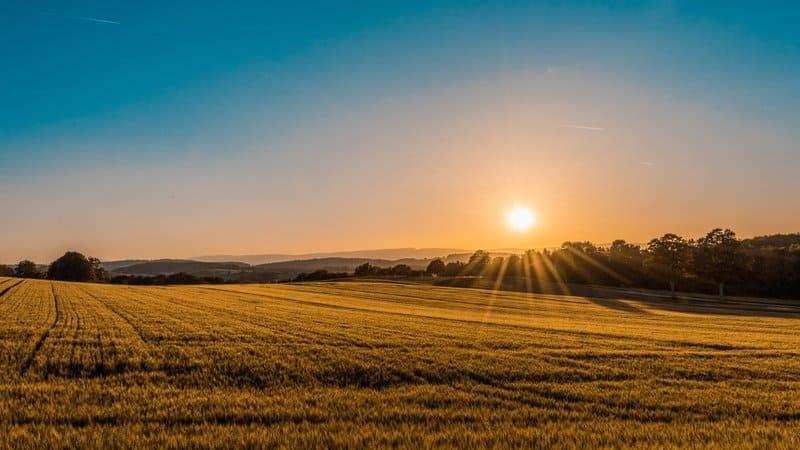 Sunrise over fields for meditation